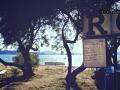 Rockorama #6 - Photo by Eliz Cervetti