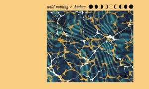 Wild Nothing dévoile Shadow