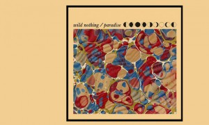 Ecoutez Paradise, nouveau single de Wild Nothing